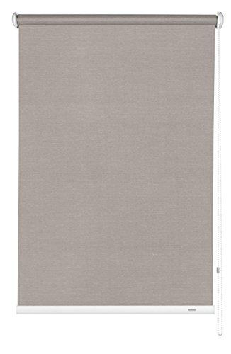 GARDINIA Tenda a rullo con catenella laterale, Installazione a parete, soffitto o nicchia, Trasparente, Opaca, Kit di montaggio incluso, Marrone, 112 x 180 cm (LxA)