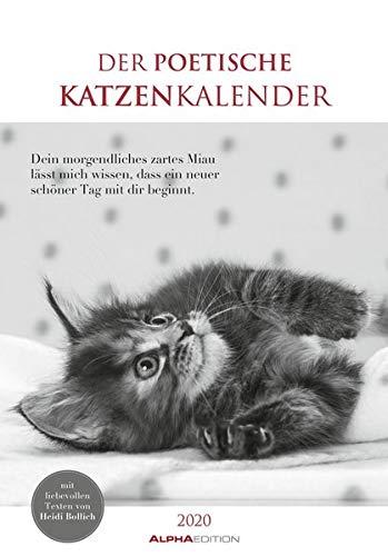 Der poetische Katzenkalender 2020 - Literarischer Bildkalender (24 x 34) - mit Zitaten - schwarz-weiß - Tierkalender - Wandkalender