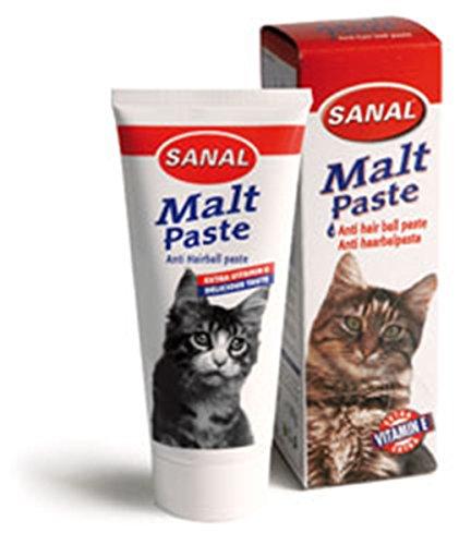 SANAL® Malt Paste 100g #0796946