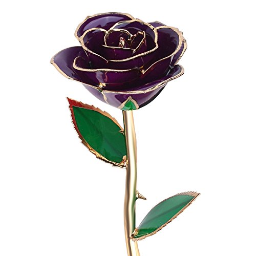 QGSTAR Valentines Gifts for Her, Long Stem 24k Gold Dipped Real Rose Preserved Forever Flower Best Romantic Loving Gift for Wife Girlfriend Birthday,Mother's Day,Wedding Anniversary (Purple)