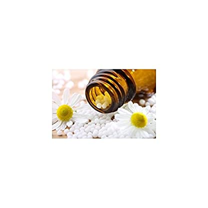 Phytopet Supply a range of natural herbal and homeopathic remedies for animals, Dog Puppy Cat Kitten Whelping & Queening… 2