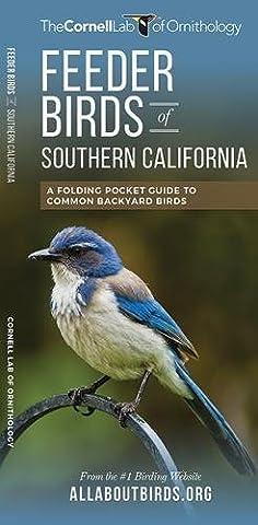 Feeder Birds of Southern California: A Folding Pocket Guide to Common Backyard Birds