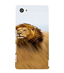 PrintVisa Animal Lion Design 3D Hard Polycarbonate Designer Back Case Cover for Sony Z5 Mini :: Z5 Compact