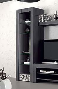 Vitrine 1 porte vitrée contemporaine CAMERON, coloris patiné gris plomb + reliefs Argent