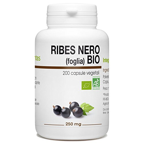 Ribes Nero (Foglia) BIo - Ribes nigrum - 250mg - 200 capsule vegetali