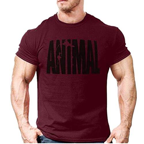 af9b856c6b4d YeeHoo Animal Carta T-Shirt Hombre Camiseta Básica Deportiva De Manga Corta  Fitness Gimnasio S
