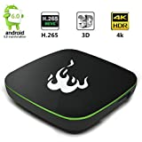 BestoU FR1 Android 6.0 Box 1GB 8GB 64 Bits Quad Core Smart Box 4k Full HD /H.265 / WiFi