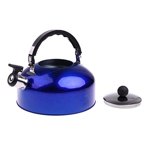 perfk Wasserkessel Camping Teekessel Outdoor Wasserkocher mit Griff, vier Farbwahl - Blau, 5L