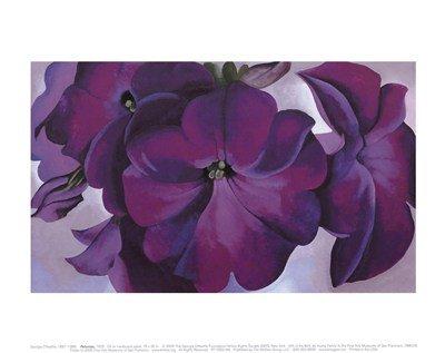 Georgia O 'Keeffe Petunias 1925Kunstdruck Poster, Gesamtgröße: 14x 11, Bild Größe: 12x 7,25 -