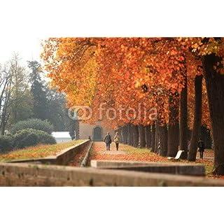 adrium Toscana,Lucca in Autunno. (76356533)