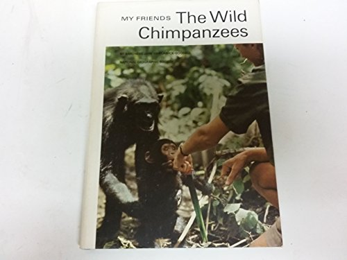 My friends, the wild chimpanzees,