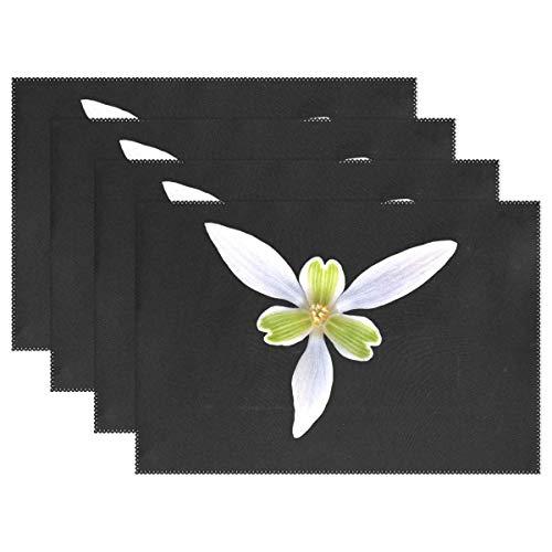 Promini Hitzebeständige Tischsets, Perce Neige Flower Heart Petal Corolla waschbar Polyester Tischsets Rutschfest waschbar Platzsets für Küche Esszimmer 4 Stück