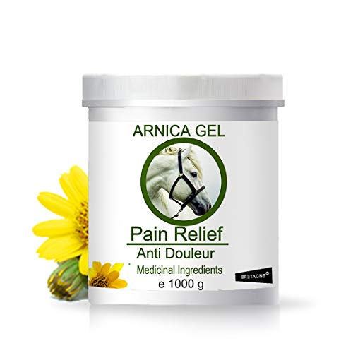 Gel d'Arnica 100% Natural 1000 g - Animaux de Compagnie, Chevaux