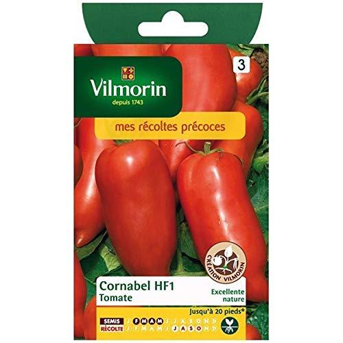 Vilmorin - Sachet graines Tomate Cornabel HF1
