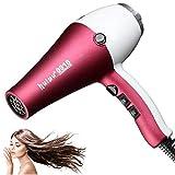 Professional Hair Dryer, 2000W Salon Hairdryer Quiet Fast Blow Dryer 2 Speed 3