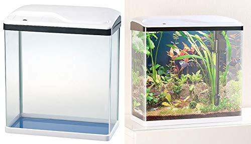 Sweetypet Aquarium Complet avec Pompe, Filtre et éclairage LED Bleu/ Blanc, 40 L