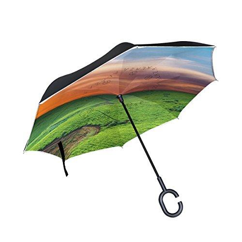 Plantation Golf (XiangHeFu Double Layer seitenverkehrt Rückseite Regenschirme Tea Plantation in Uganda Faltbar Winddicht UV-Schutz Big Gerade für Auto mit C-Förmigem Henkel)