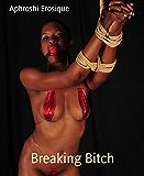 Breaking Bitch