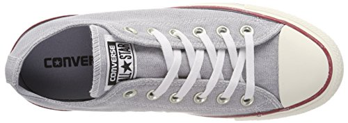 Converse Ctas Ox Wolf Grey/White, Baskets Mixte Adulte Grau (Wolf Grey/Wolf Grey/White)