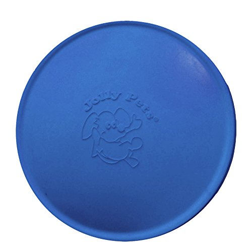 Jolly Pets Jolly Flyer Gummi Floating Disc -
