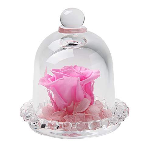 Floweworld Endlose Konservierte Rosen Blume Im Glas Romantisches Geschenk Valentinstag Geburtstag Muttertagsgeschenk
