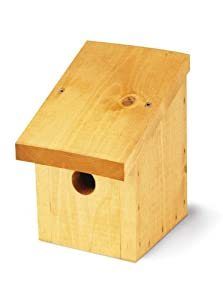 Tom Chambers 32mm Entrance Snoozy Bird Nest Box by JB Retail Solutions