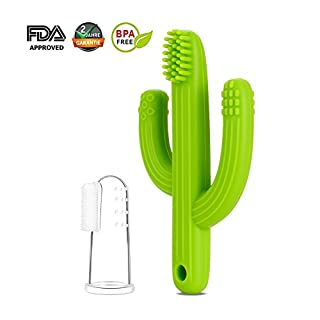 Mr.Van Baby Teether Teething Toys Toothbrush, Infant Training Toothbrush for Teething, Cactus Shape and Hands Free Design, 100% Food Grade Silicone/BPA-Free, for Babies 3-12 Months (Green)