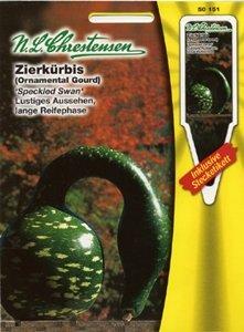 Cucurbita pepo, Zierkürbis, Speckled Swan