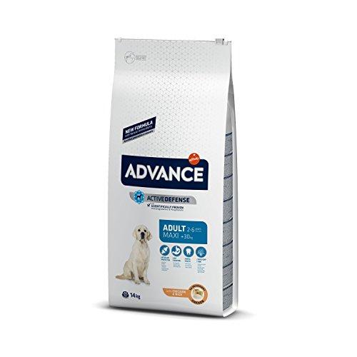 Advance Pienso para Perro Maxi Adulto con Pollo - 14000 gr