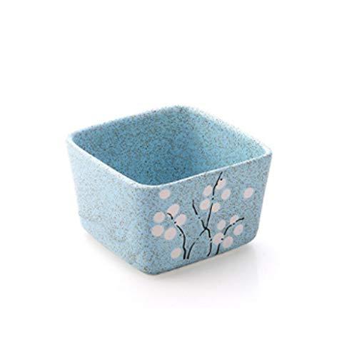 Youshenghp Pot de Fleur en céramique charnue Balcon Grand Pot de Plantes intérieur Petit Pot de Plantation (Couleur : Bleu)