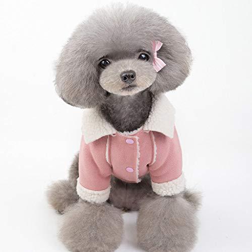Fenverk Hundekleidung Für Kleine Hundepullover Hund Kleidung Herbst Winter Haustier Katze Hundebekleidung Sweater Warm Kapuzenjacke Hundemantel(A Rosa,M) -