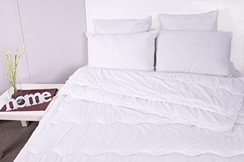 AGIA TEX 4-Jahreszeiten-Steppbett Bettdecke-Set 2 Decken 135x200 cm Microfaser atmungsaktive Steppdecke Allergiker geeignet