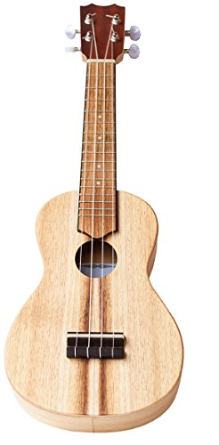 Voggenreiter su-1000Volt chitarra