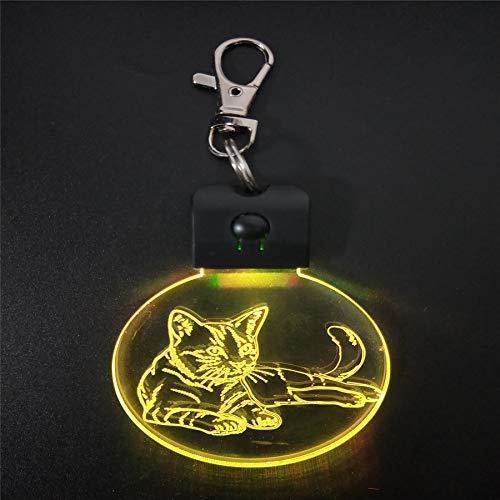 Gatto addormentato Luce notturna acrilica Lampada da tavolo magica illuminazione colore decorazione regalo e batteria al litio