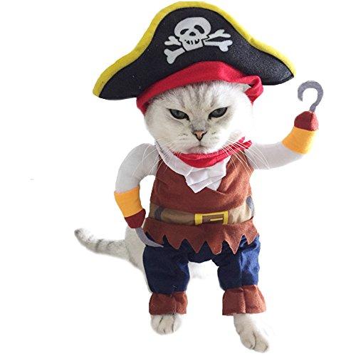 Rabatt Kostüm Piraten - winwintom Halloween Pirat Cool Süßer Hund Pet Cosplay Kostüm Kleidung