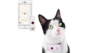 Weenect Cats 2 - El collar GPS para gatos más pequeño del mundo