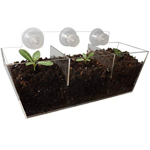 NIUXX Acryl-Fenster-Pflanzkästen, kreatives Blumentopf-Halter, Pflanztablett mit Saugnapf, tolles Dekorationsgeschenk für Zuhause 11.8 x 3.9 x 5.1 Inch