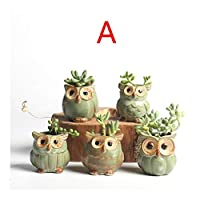 BGDRR 5Pcs Small Owl Shaped Flower Pots Ceramic Mini Succulents Pots Home/Garden/Office Decoration Flower Vases (Color : FlowerpotOwl 5PCS A)