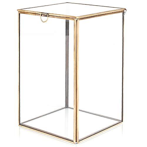 Claro Cristal Terrario planta w/latón metal frame/mesa Curio Case/Caj
