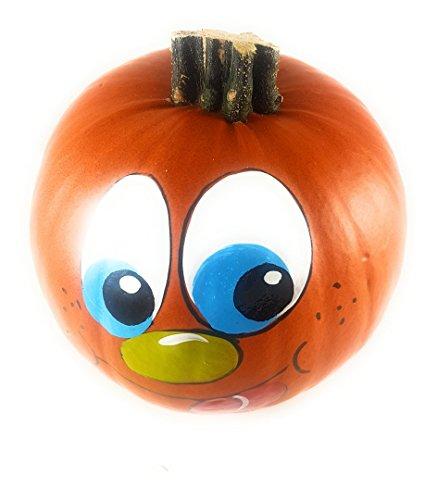 1 Halloweenkürbis mit handbemaltem Gesicht ca. 11 cm Durchmesser - ALS Zierkürbis/Dekokürbis Halloween für Kinder