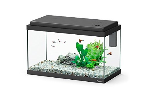 Aquarium Aquatlantis Noir