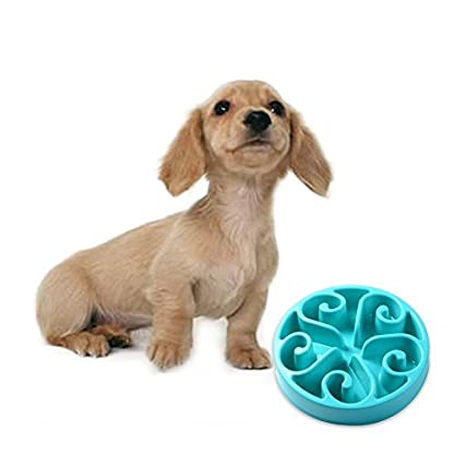 splink Dog Bowl Slow Feed Interactive Fun Feeder Bloat Stop, Prevent Bloating, Anti Choking, Eco-friendly Healthy Eating… 5