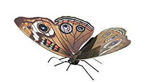 Metal Earth- Maqueta metálica Mariposa Buckeye (Fascinations MMS124)