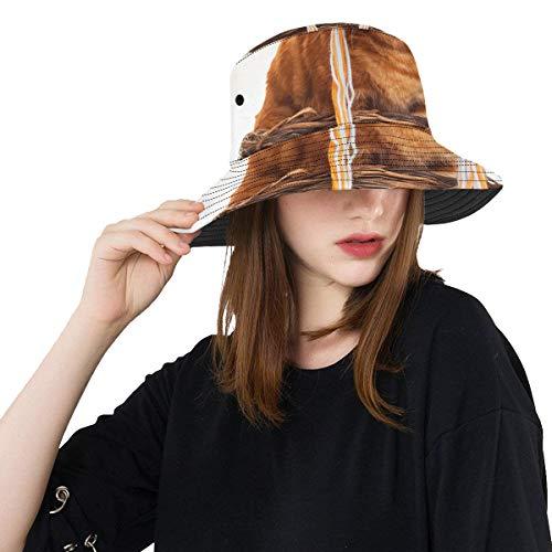 zen lustiger Hut Sommer Unisexbaumwollmode Fischen Sun Eimer Hüte für Kind Teenager Frauen und Männer mit besonders anpassender Top Packable Fischer Kappe für im Freienreise ()