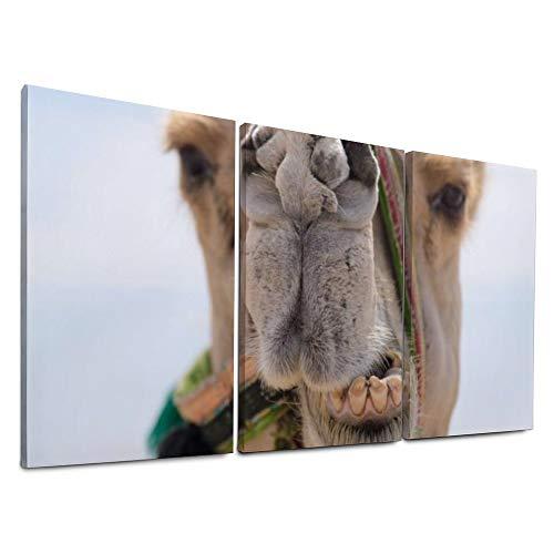 LONK Modern Wall Décor 3 Piece Craftwor Open Bild als Leinwandkopie Funny Camel Home Decorative