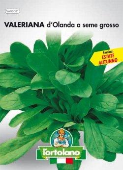 Sementi orticole di qualità l'ortolano in busta termosaldata (160 varietà) (VALERIANA D'OLANDA A SEME GROSSO)