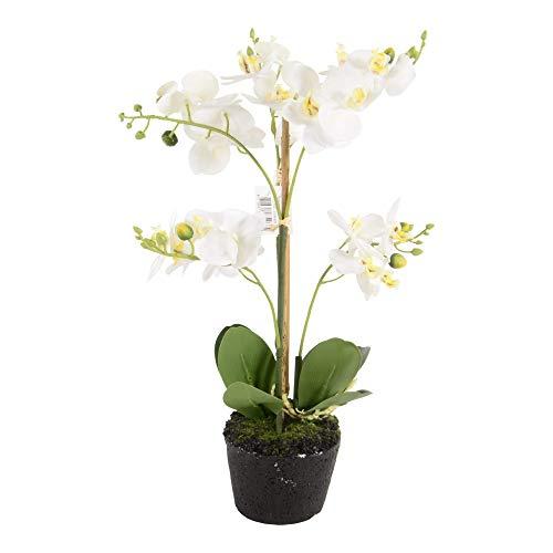 Onebox24 Künstliche Orchidee Phalaenopsis 3 Zweige 38 cm Weiß Kunstorchidee Kunstblume