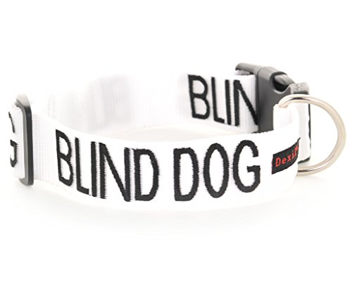 blind-dog-white-colour-coded-nylon-s-m-l-xl-buckle-dog-collars-no-limited-sight-prevents-accidents-b