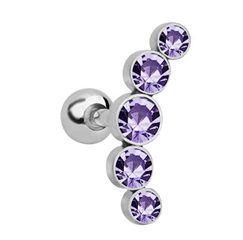 ERHUAN Ohrringe in Knopfform Ohrringe aus Edelstahl Strass Ohrringe forFrau,Purple