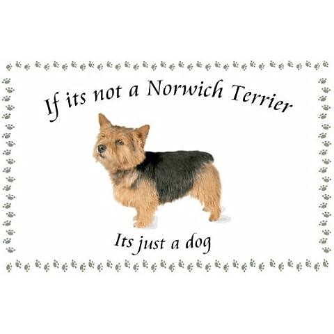 Norwich Terrier - diseño de Llaveros de perro - Si su no